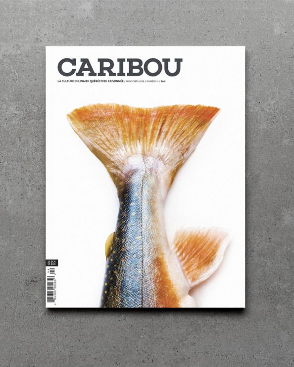 Caribou_Vol4