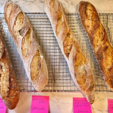 nutrition et tests avec des baguettes de pain