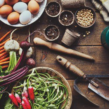 trucs autonomie alimentaire de chacun